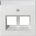 Cover plate with 30¡ angled socket outlet and inscription field for Modular Jack support ring - pure white matt