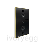 Aalto D3N Active network speaker 200W, in-wall version - brushed brass