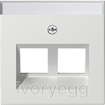 Cover plate with 30¡ angled socket outlet and inscription field for Modular Jack support ring - pure white glossy